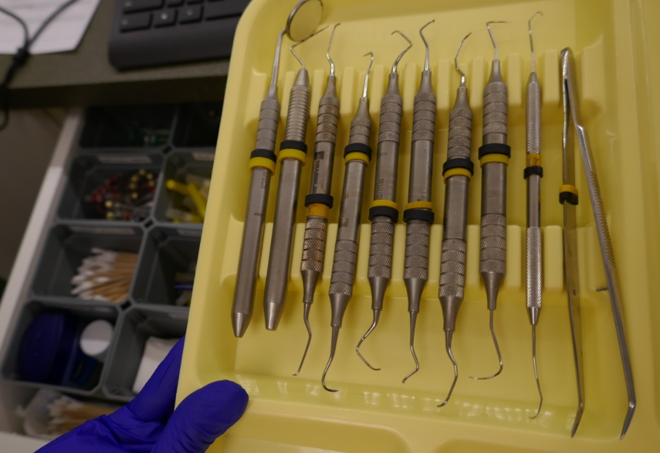 dental hygienists tools at Archer Dental Little Italy in Toronto